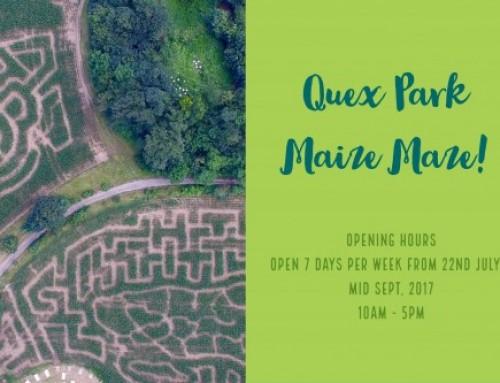 Quex Park Maize Maze!