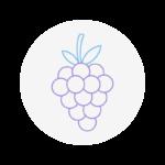 Free Fruit Icon